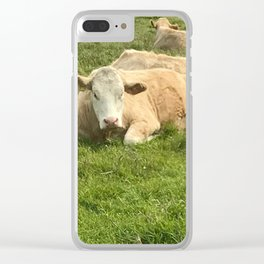 Ireland Cow Clear iPhone Case