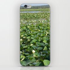 Amana Lilly Pond iPhone Skin