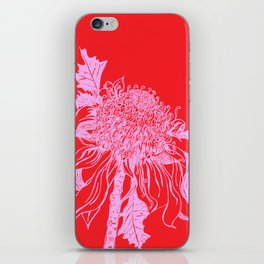 Australian native flower illustration in pink and red iPhone Skin