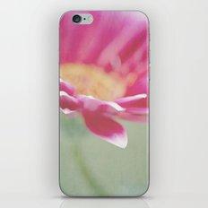 Sweet Springtime iPhone & iPod Skin