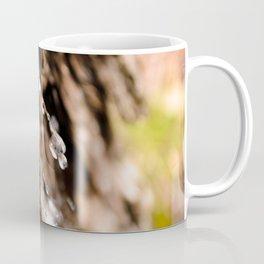 Tree Bark Macro Coffee Mug