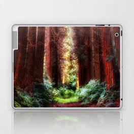 The Pines Laptop & iPad Skin
