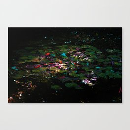 'The Pond' by TDL Canvas Print