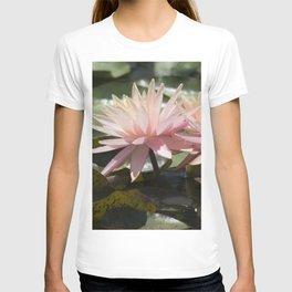 Longwood Gardens - Spring Series 304 T-shirt