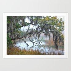 Daniel Island Marsh 1 Art Print