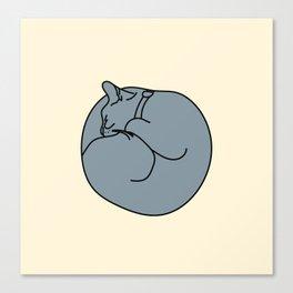 Sleeping Cat 2 Canvas Print