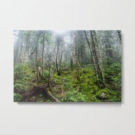 5000 ft. Metal Print