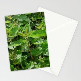 Stinging Nettle Urtica Stationery Cards