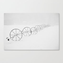 White Out Days Canvas Print
