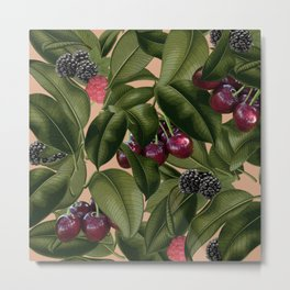 FRUITS AND LEAVES Metal Print
