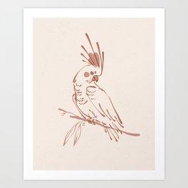 Blush Cockatoo Illustration   Alex Gold Studios Art Print