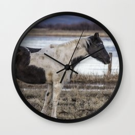 Domesticated Wall Clock