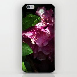 Shy Rhododendron iPhone Skin