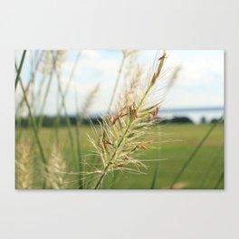 Lake Fauna Canvas Print