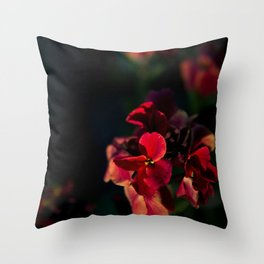 Merisi Throw Pillow
