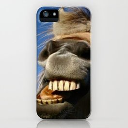 Happy Horse Photography Print iPhone Case