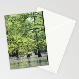 Cypress Trees in the Louisiana Swamp Stationery Cards
