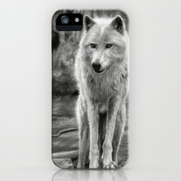 White Wolf in the Forest iPhone Case