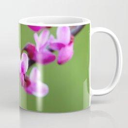 Eastern Redbud bloom Coffee Mug