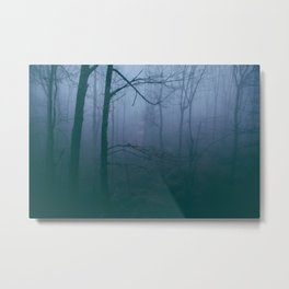 Foggy Mornings Metal Print