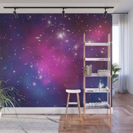 Dark Matter and Galaxies in a Cluster Wall Mural