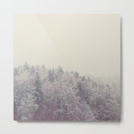 A snow covered woodland in the German Alps Metal Print