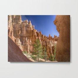 Hoodoos in the Canyon Metal Print