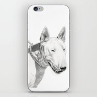 bull terrier iPhone & iPod Skins featuring Dogs: Bull Terrier by Ruben Pino