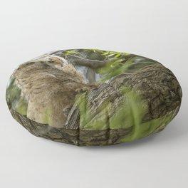 Great Horned Owlet at Malheur HQ Floor Pillow