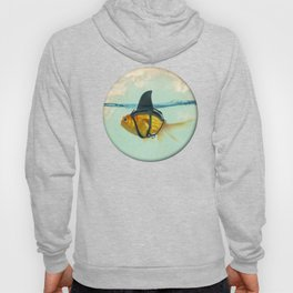Brilliant Disguise Goldfish Hoody