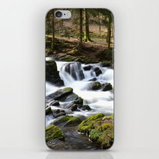 Trees and Water iPhone & iPod Skin