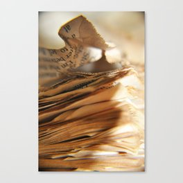 Books Canvas Print