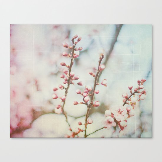 Small & Soft Canvas Print
