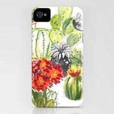 C is for Cacti iPhone (4, 4s) Slim Case