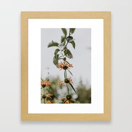 Nature's Reach Framed Art Print