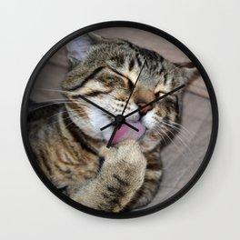 Mr Handsome Grooming Tomcat Wall Clock