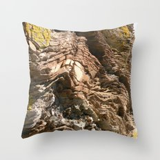 Big Rock by the beach Throw Pillow