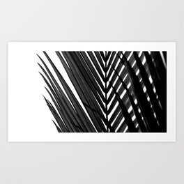 Tropical Darkroom #150 Art Print