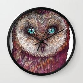 The Rainbow-feathered Barn Owl Wall Clock