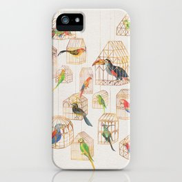 Architectural Aviary iPhone Case