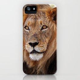 Big lion - Africa wildlife iPhone Case