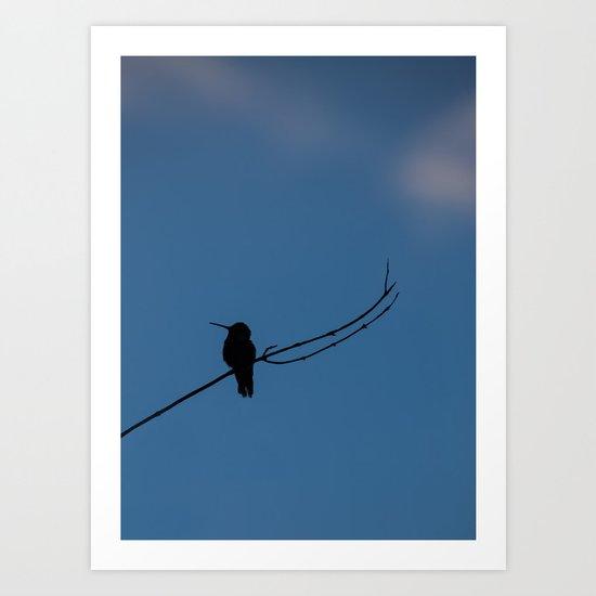 Hummingbird Silhouette Art Print