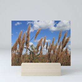 Field of Sugarcane Plumegrass in Sheldon Lake State Park Texas Mini Art Print