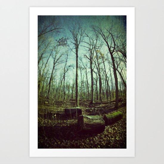 Where Giants Walk Art Print