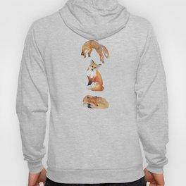 3 Watercolor Foxes Hoody