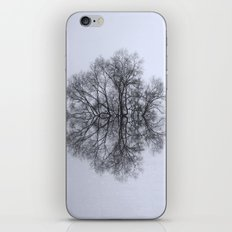 Trees of Reflection iPhone & iPod Skin