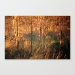 #96 Canvas Print