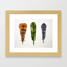 Feather Trio Framed Art Print
