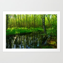 Reflection in the spring water of a forest river Art Print