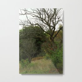 Hazy Forest No.1 Metal Print